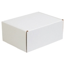 11.125 in x 8.75 in x 5 in White Deluxe Literature Mailers