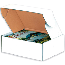 White Deluxe Literature Mailers