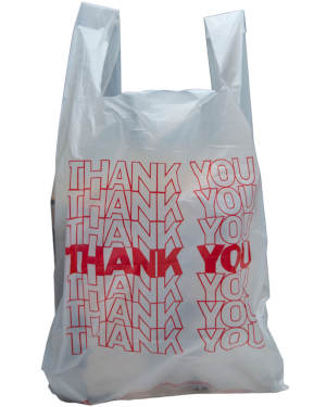 10 x 5 x 18 Thank You Bags
